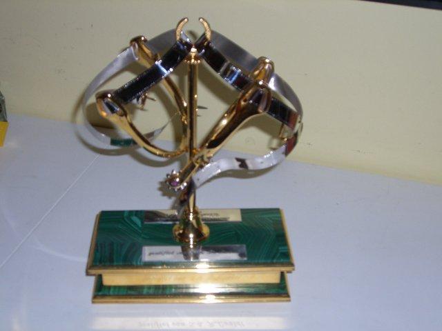 Prix Lualdi pour un maniement exemplaire avec le cheval