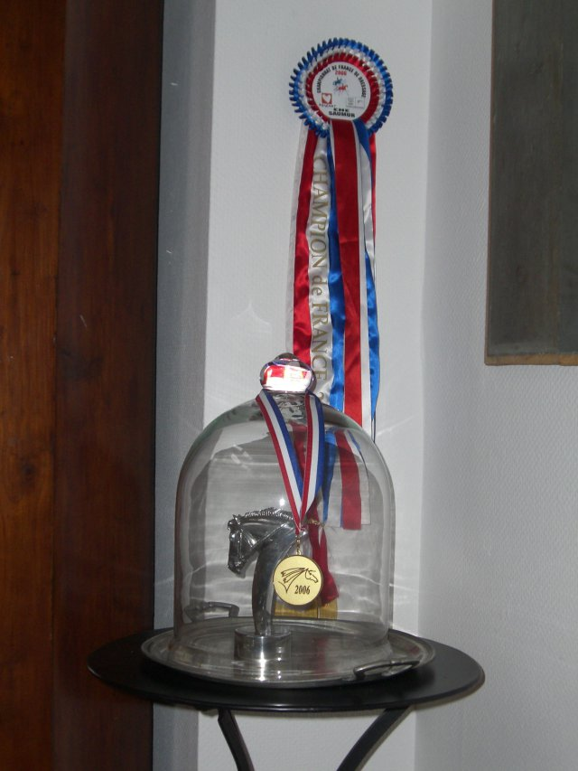 Championne de France de dressage 2006
