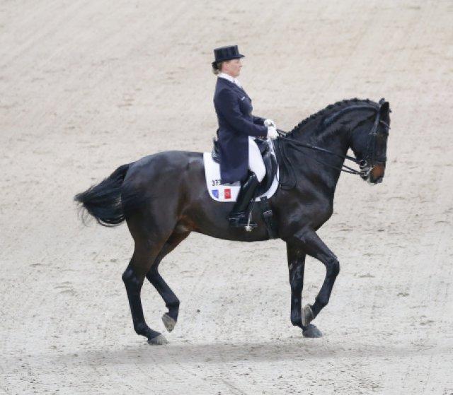 2013: German Masters Stuttgart